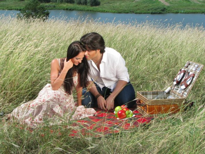Загородный пикник