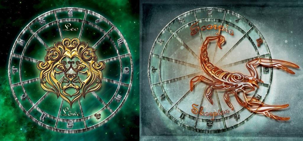 Лев и Скорпион: совместимость