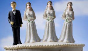 Полигамность мужчин