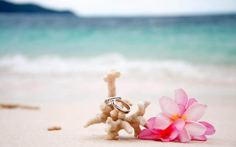 Подарки на коралловую свадьбу