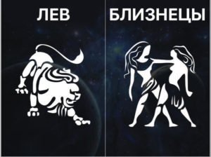 Дружба Близнецов со львами