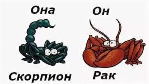 Союз мужчины-Рака и женщины-Скорпиона