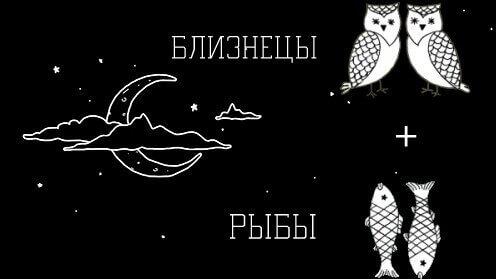 Рыбы и Близнецы