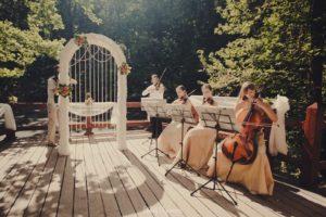 Музыкальное сопровождение на свадьбе