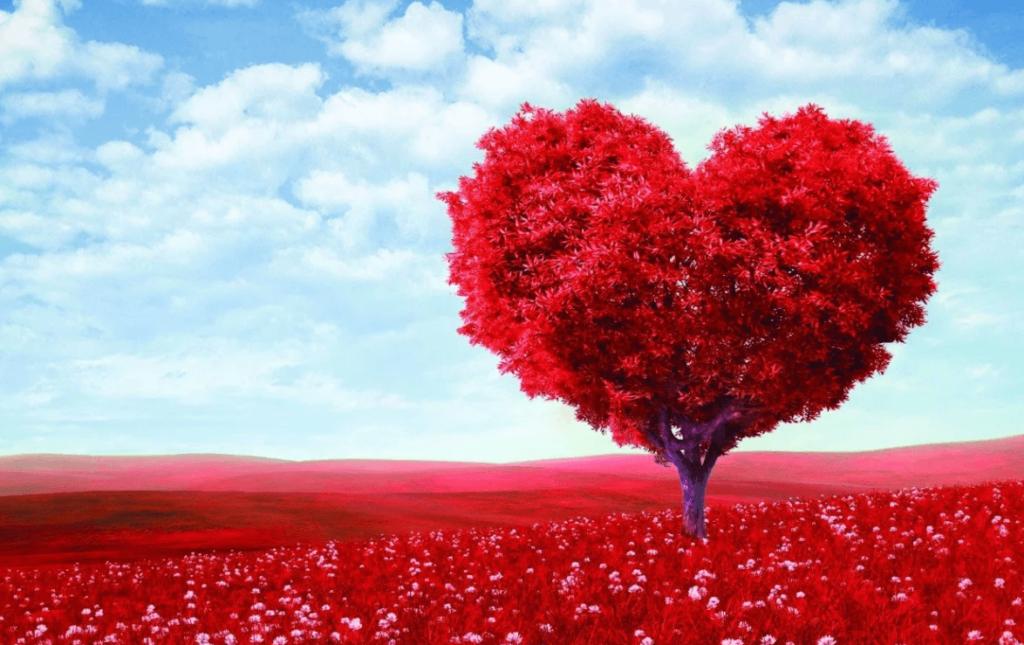 Обычаи годовщины красного дерева